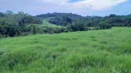 Fazenda em Una