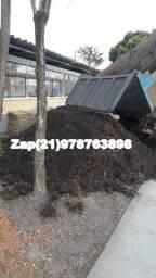 caminhão de terra adubada para hortaliças e plantas em geral