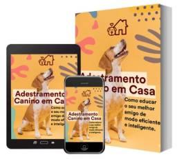 Quer Adestrar Seu Cachorro em Casa? Adestre Seu Cão Começando Hoje Mesmo