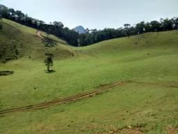 Fazenda de 40 Alqueires em Delfim Moreira- Sul de Minas Gerais.