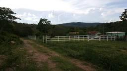 Fazenda Aragoiânia/Varjão - 14 Alqueires