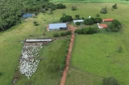 8271 | Fazenda à venda com 1 quartos em ZONA RURAL, PARAISO DO TOCANTINS