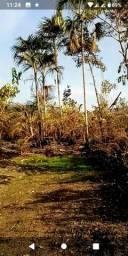 Vendo terreno rural , próx a Ferreira Gomes