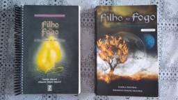 4 livros: Filho do fogo e guerreiros da luz - Daniel Mastral