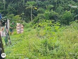 Vendo terreno em Belterra, Ótima localização