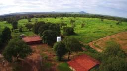 Fazenda 335 Alqueires Silvanópolis - TO