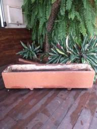 Vaso se plantas  - Campo Grande Ms