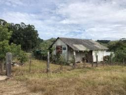 Sítio em Santo Antônio da Patrulha com Casa , Poço, Luz, na RS 474. Peça o Vídeo