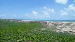 Terreno a beira mar na Praia de Maracajaú - 720m²
