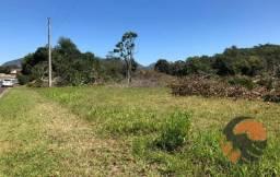Terreno à venda, 8250 m² - Santa Mônica - Guarapari/ES
