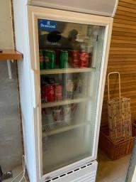 Refrigeradora Expositora 210l