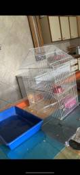 Gaiola hamster,roedores