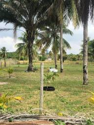 Título do anúncio: Terreno e lotes,  Barra de Serinhaém - Bahia