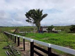 Título do anúncio: Fazenda à venda, por R$ 3.200.000 - Zona Rural - Machadinho D'Oeste/RO