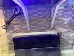 Título do anúncio: Luminária para aquário marinho 30w branco / azul