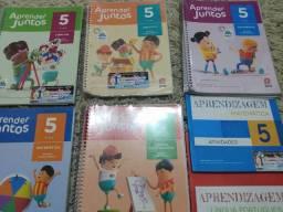 Livro Aprender Juntos 5 ano