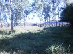 Vendo Fazenda em Capão Bonito 86 Alqueires