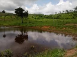 Fazenda 37 alqueires Municipio Vila propricio