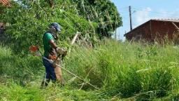 Limpeza de lotes e jardinagem