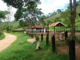 Fazenda em Juiz de Fora/MG 83 hectares