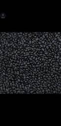 Feijão preto novo