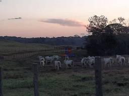 Título do anúncio: Fazenda à venda, por R$ 7.900.000 - Centro - Alta Floresta D'Oeste/RO