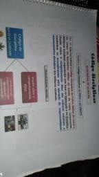 Material simplificado código disciplinar pmce