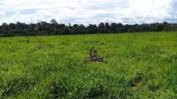 Título do anúncio: Sítio à venda, por R$ 2.000.000 - Zona Rural - Machadinho D'Oeste/RO