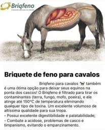 Título do anúncio: Biqfeno, saco de 40 Kgs