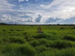 Título do anúncio: Fazenda à venda por R$ 2.000.000 - Centro - Seringueiras/RO