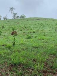 Terreno Em Piranga Área Rural Região do Angu 5 hectares 50.000 mts Sítio Fazenda Chácara