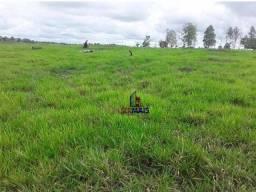 Título do anúncio: Fazenda à venda, por R$ 3.500.000 - Zona Rural - Machadinho D'Oeste/RO