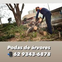 Título do anúncio: Podas de árvores