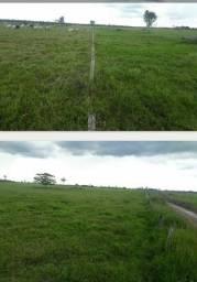 Título do anúncio: Fazenda com 1 dormitório à venda,  m² por R$ 36.000.000 - Zona Rural - São Francisco do Gu