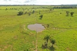 Título do anúncio: Fazenda com 1 dormitório à venda, por R$ 6.300.000 - Zona Rural - Ji-Paraná/RO