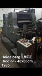 Heidelberg moz - bicolor 66x48cm