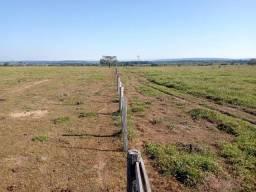Título do anúncio: Fazenda à venda, por R$ 9.240.000 - Zona Rural - Alvorada D'Oeste/RO
