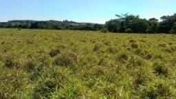 Fazenda Morro Da Garça