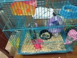 Vendo hamster com gaiola e tudo 120 R$ entrego