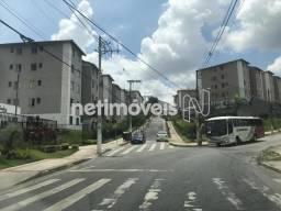 Apartamento à venda com 2 dormitórios em Vila oeste, Belo horizonte cod:545770