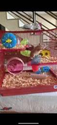 Hamster sírio com gaiola super luxo