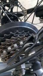 Bicicleta flat bike