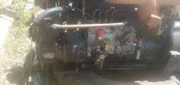 Motor e caixa mwm 229