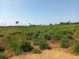 Título do anúncio: Fazenda com 1 dormitório à venda, 3847800 m² por R$ 3.180.000,00 - Zona Rural - Machadinho