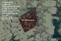 Título do anúncio: Fazenda na Coxilia Rica