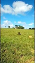 Título do anúncio: Sítio à venda, por R$ 3.192.000 - Zona Rural - Theobroma/RO