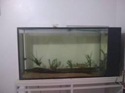 Título do anúncio: Vende-se aquário 600 reais