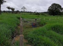 Título do anúncio: Sítio à venda em Machadinho, 73 alqueires por R$ 1.825.000 - Zona Rural - Machadinho D'Oes