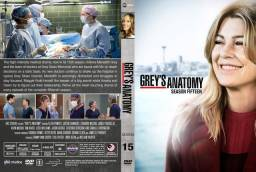 Greys  anatomy todas as 15 temporadas completas envio digital
