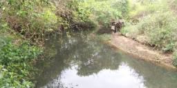 Chácara a 50 km de Goiânia em professor Jamil com riacho terra de cultura 20 mil metros